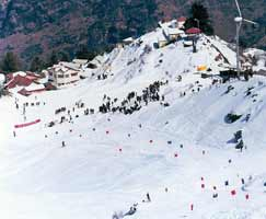 Auli Honeymoon